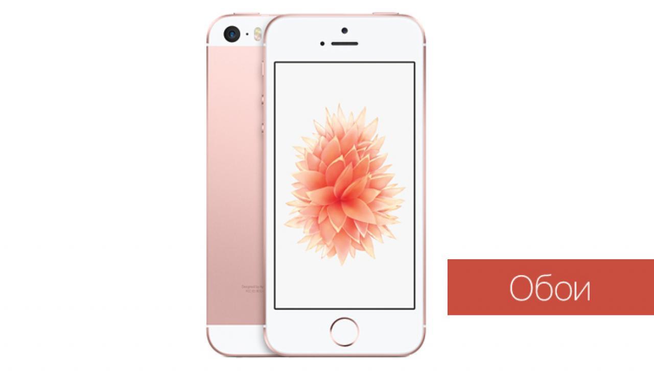 Айфон 8 последние новости на сегодня 2017